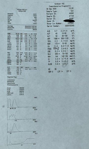 22C44C93-B0BD-42D9-AF90-D24B92CFDBED.jpeg