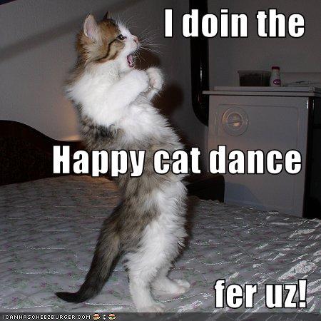 happy-cat-dance.jpg